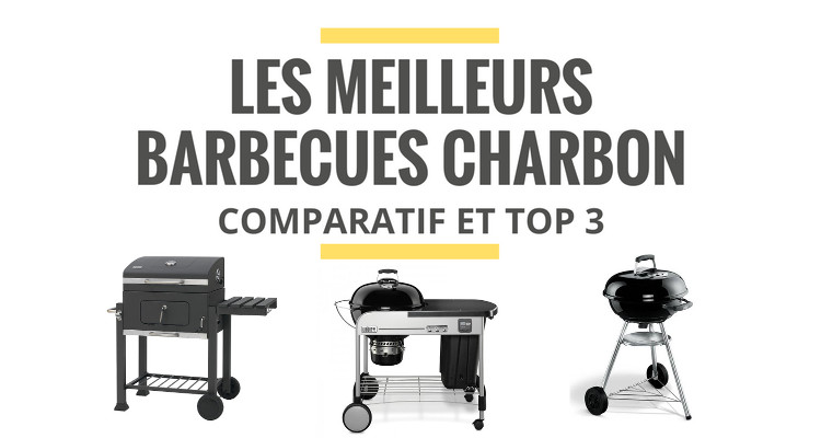 Top 5 : Barbecue a bois Avis
